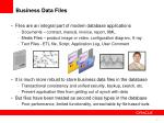 business data files