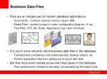 business data files
