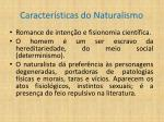 caracter sticas do naturalismo
