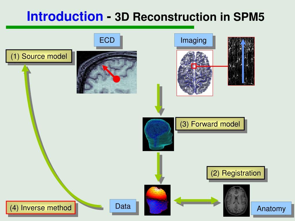 PPT - EEG/MEG source reconstruction in SPM5 PowerPoint Presentation