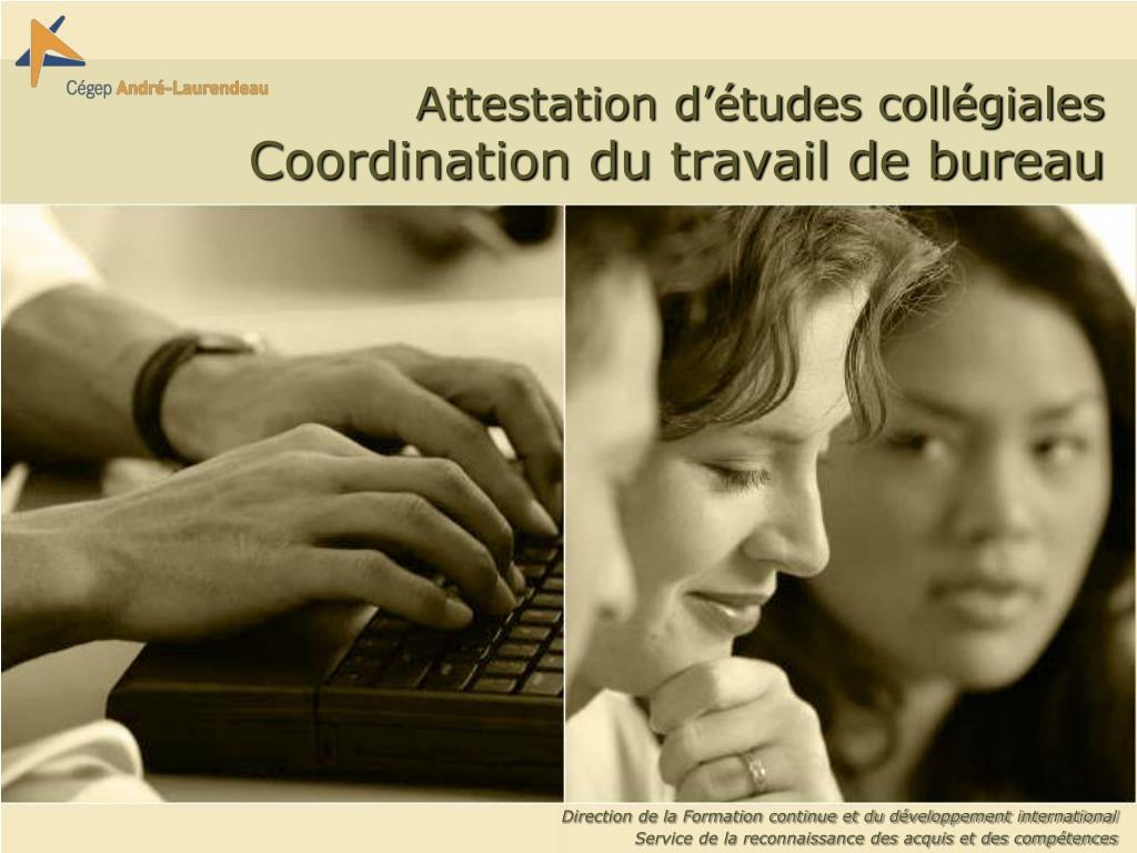 attestation d tudes coll giales coordination du travail de bureau l.