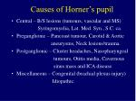 causes of horner s pupil
