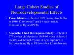 large cohort studies of neurodevelopmental effects