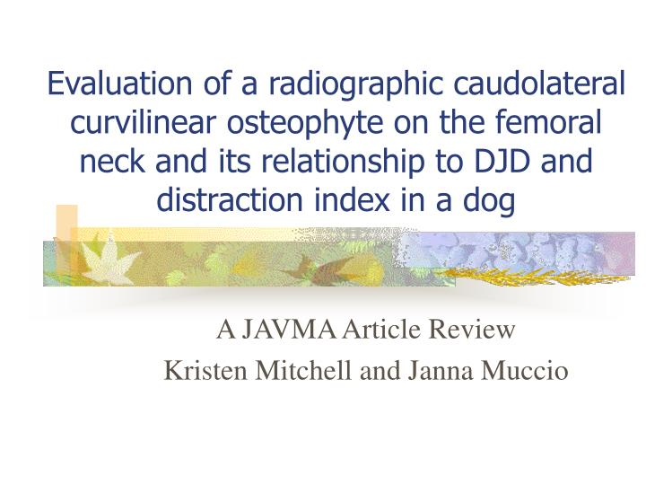 a javma article review kristen mitchell and janna muccio n.