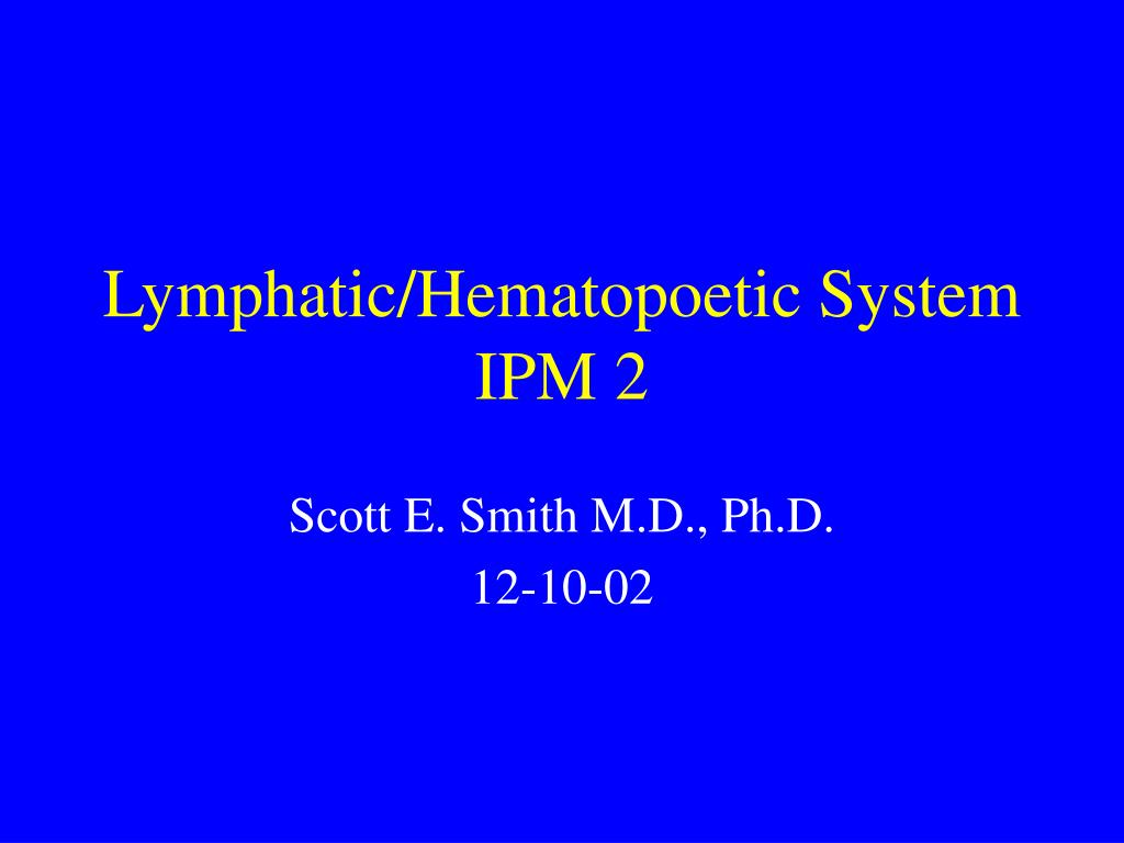 lymphatic hematopoetic system ipm 2 l.