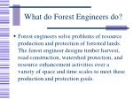 what do forest engineers do