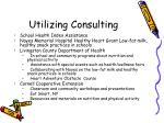 utilizing consulting