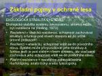 z kladn pojmy v ochran lesa37