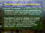 z kladn pojmy v ochran lesa53
