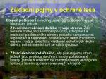 z kladn pojmy v ochran lesa54