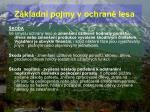 z kladn pojmy v ochran lesa58