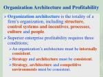 organization architecture and profitability