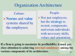 organization architecture1
