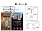 the squid