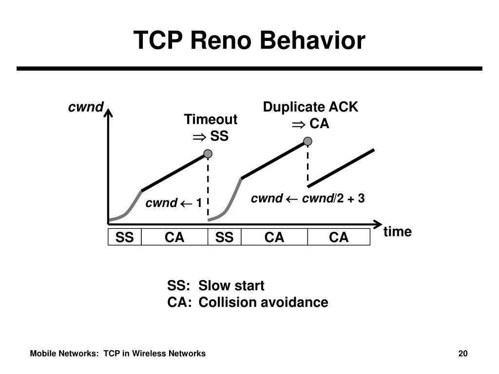 TCP Reno Behavior
