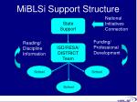 miblsi support structure