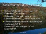 kohlenstoffdioxid co 2 nachweis