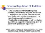 emotion regulation of toddlers