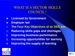 what is a sector skills council