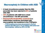 macrocephaly in children with asd