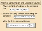 optimal consumption and leisure calculus