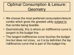 optimal consumption leisure geometry