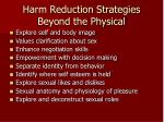 harm reduction strategies beyond the physical