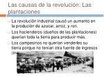las causas de la revoluci n las plantaciones