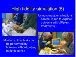 high fidelity simulation 5