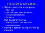 the future of simulation