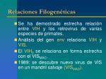 relaciones filogen ticas