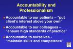 accountability and professionalism