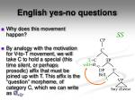 english yes no questions1