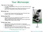 your microscope