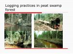 logging practices in peat swamp forest