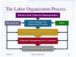 the labor organization process