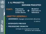 3 il progetto giovani psicotici