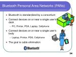 bluetooth personal area networks pans