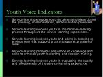 youth voice indicators
