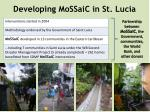 developing mossaic in st lucia