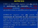 matriz bcg2