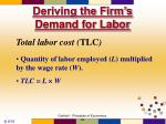 deriving the firm s demand for labor18