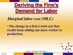 deriving the firm s demand for labor19