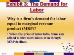 exhibit 3 the demand for labor27