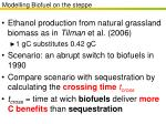 modelling biofuel on the steppe