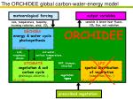 the orchidee global carbon water energy model