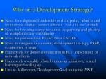 why an e development strategy1