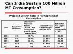 can india sustain 100 million mt consumption