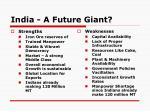 india a future giant1