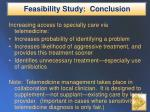 feasibility study conclusion